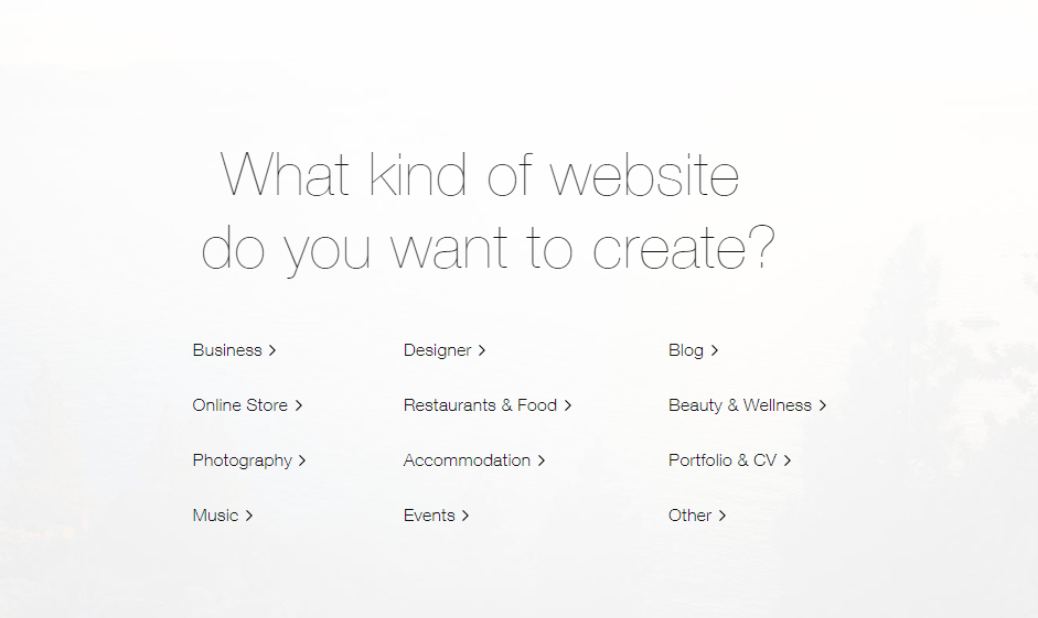 WIX website type