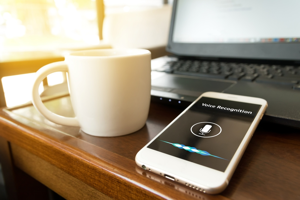 How to optimize website for voice search 2017