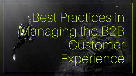 Best Practices in Managing the B2B Customer Experience
