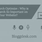 Why is Voice Search So Important on Your Website?